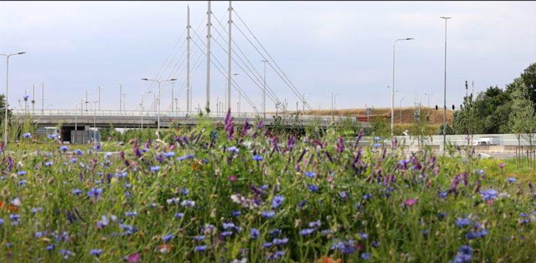 Energielint A12 Ede Veenendaal Renwsoude Overberg Driebergen